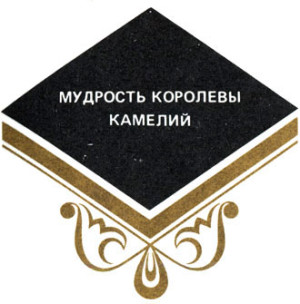 2014_01_24_03_006