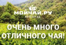 Чайный магазин китайского чая Мойчай