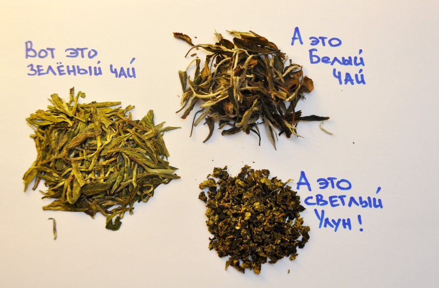 Китайский белый чай полезные свойства