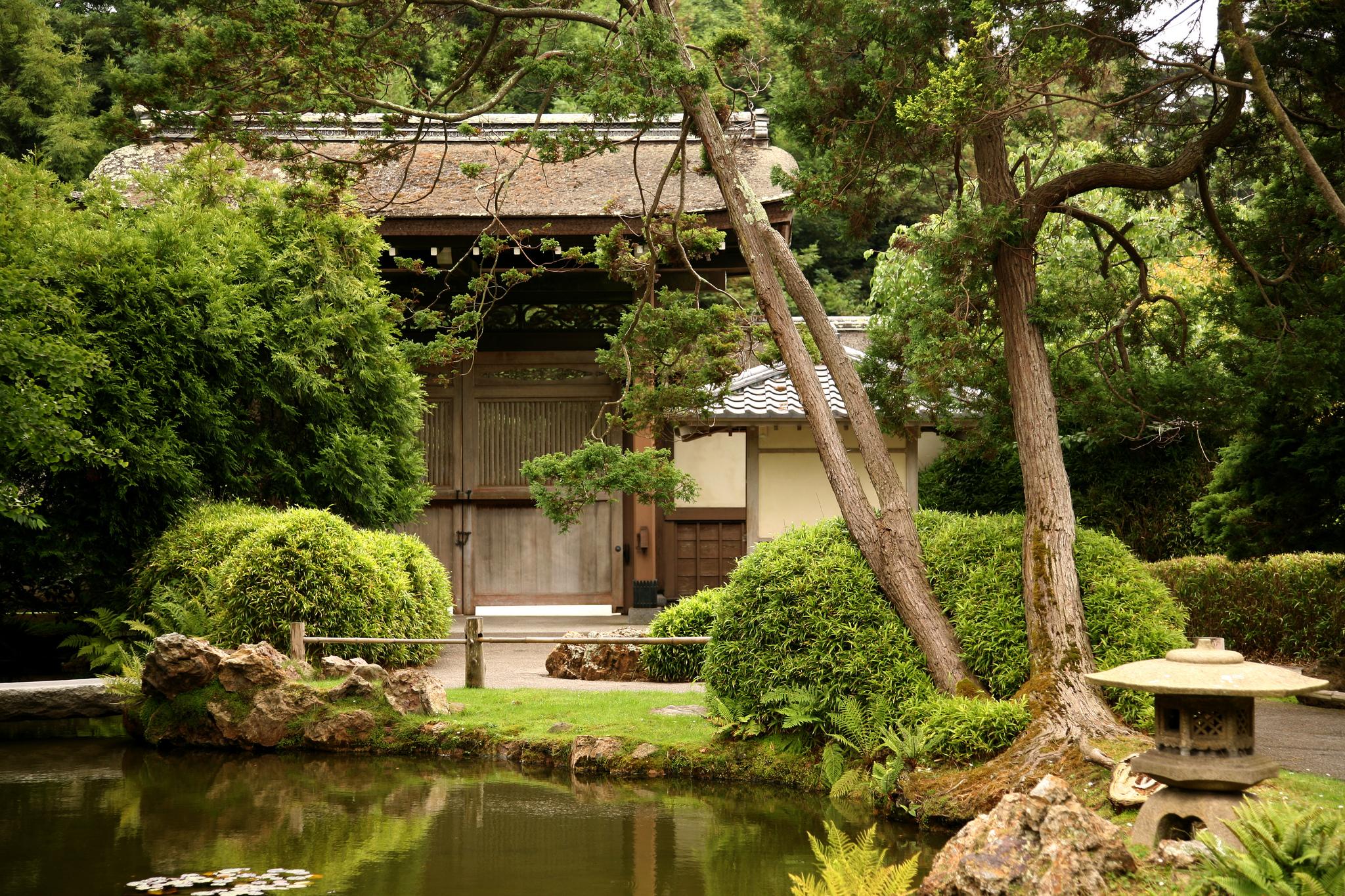 японский чайный домик фото терпения