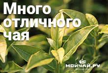 Чайный магазин китайского чая Мойчай.ру | Китайский чай, посуда, мате | широкий выбор | доступные цены | доставка